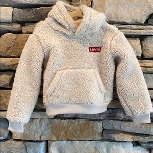 Official Levi's Hooded Pullover